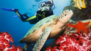 mergulho em fernando de noronha