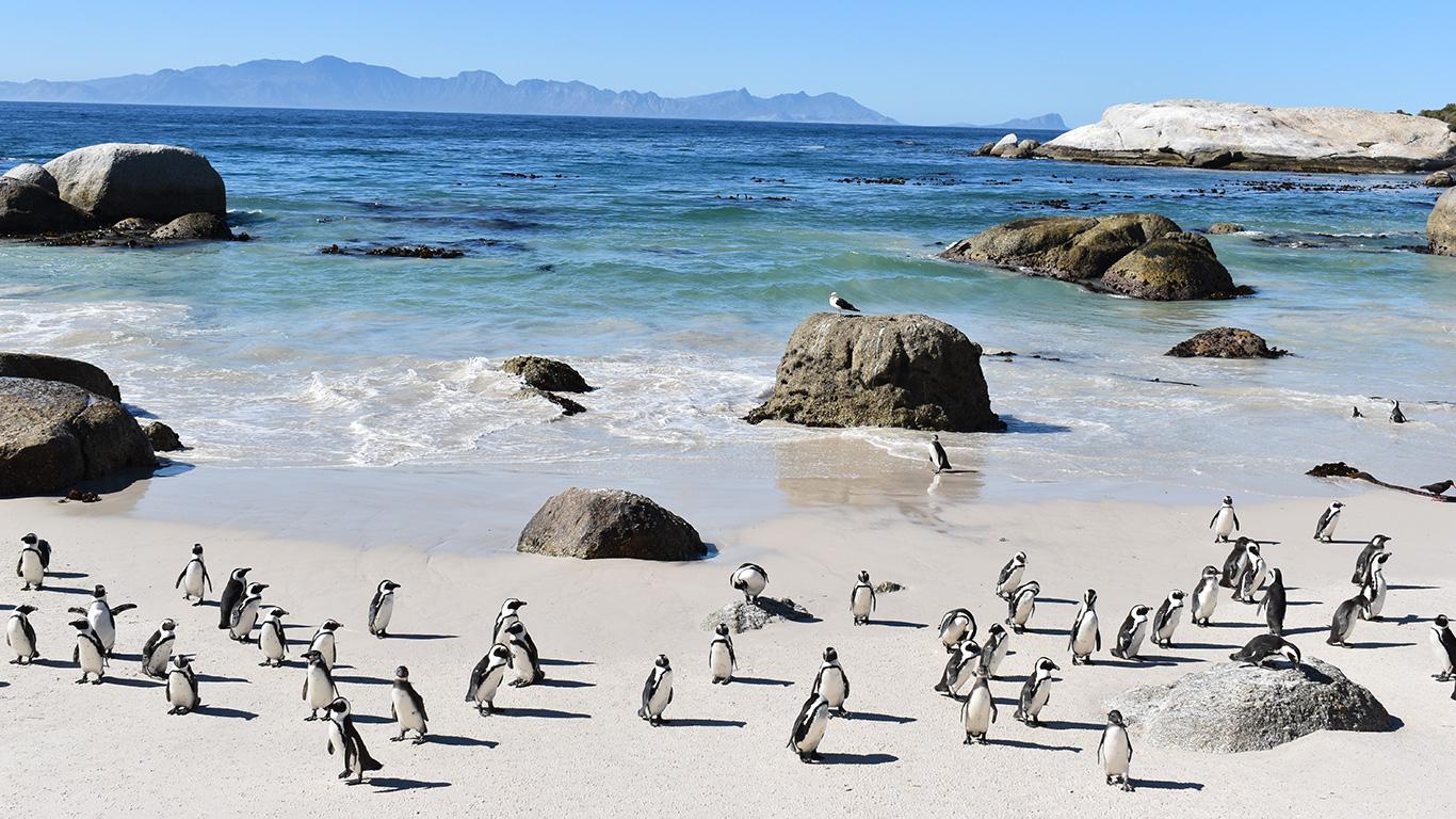 Conheça Cape Town, uma das joias da África do Sul