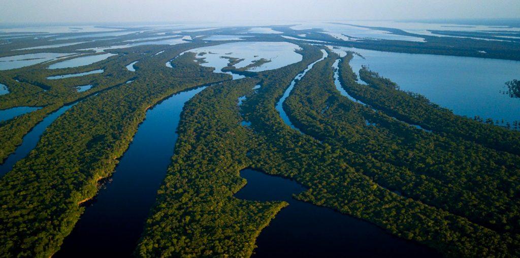 Blog Ambiental | Boto cor de rosa e as belezas da Amazônia