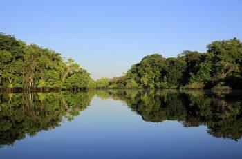 Cruzeiros Fluviais: uma forma especial de conhecer a Amazônia